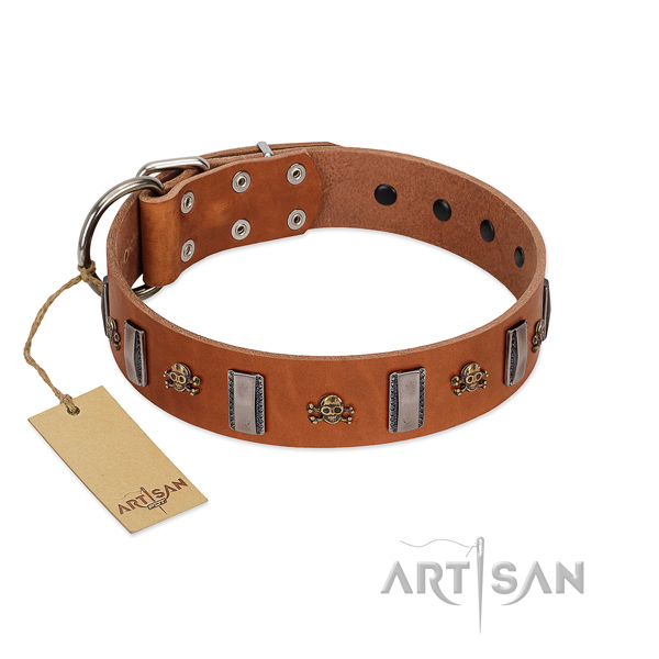 Full grain leather dog collar with stylish embellishments for your doggie