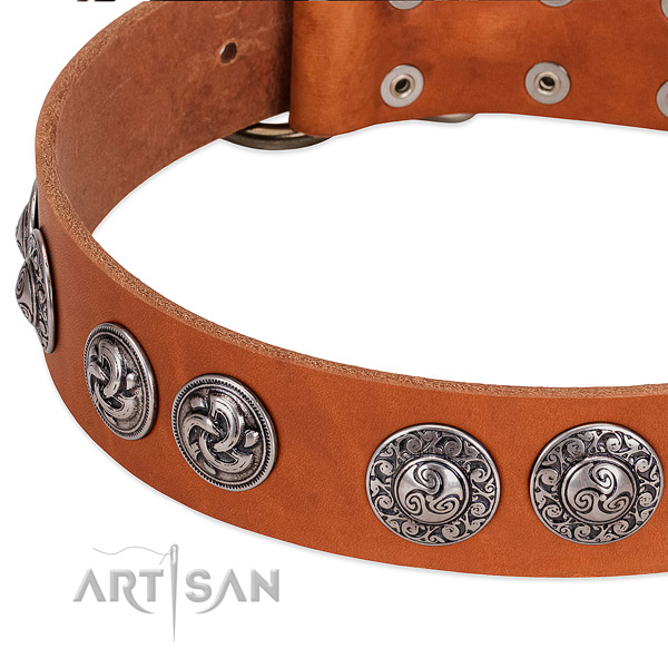 Exquisite full grain genuine leather dog collar for stylish walking