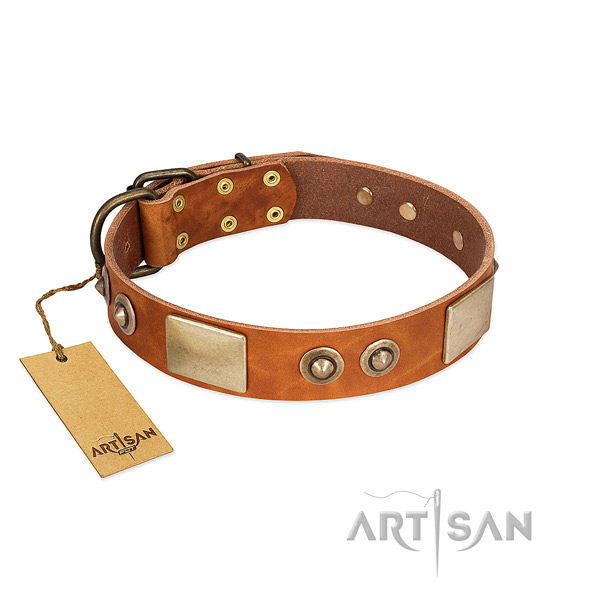 Easy adjustable natural genuine leather dog collar for everyday walking your pet