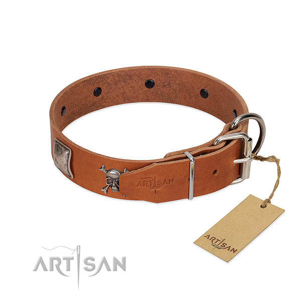 Exquisite genuine leather dog collar with rust-proof embellishments