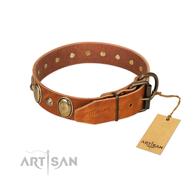 Everyday use genuine leather dog collar