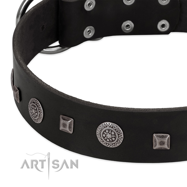 Incredible full grain natural leather collar with decorations for your four-legged friend