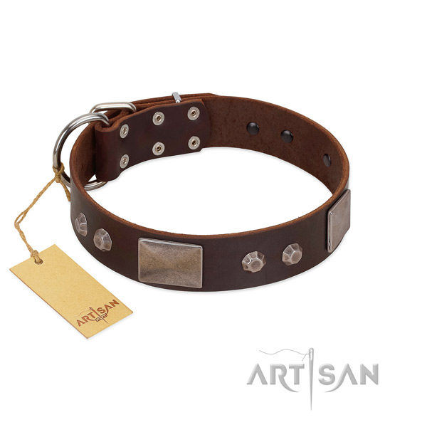 Adjustable natural leather dog collar with rust resistant D-ring