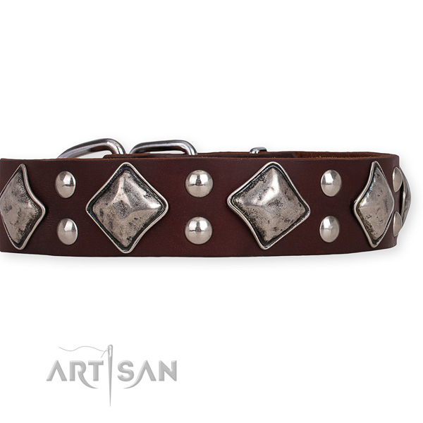 Full grain genuine leather dog collar with designer rust-proof adornments