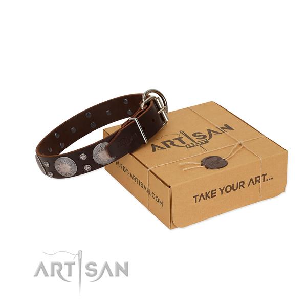 Exceptional decorations on full grain leather collar for stylish walking your four-legged friend