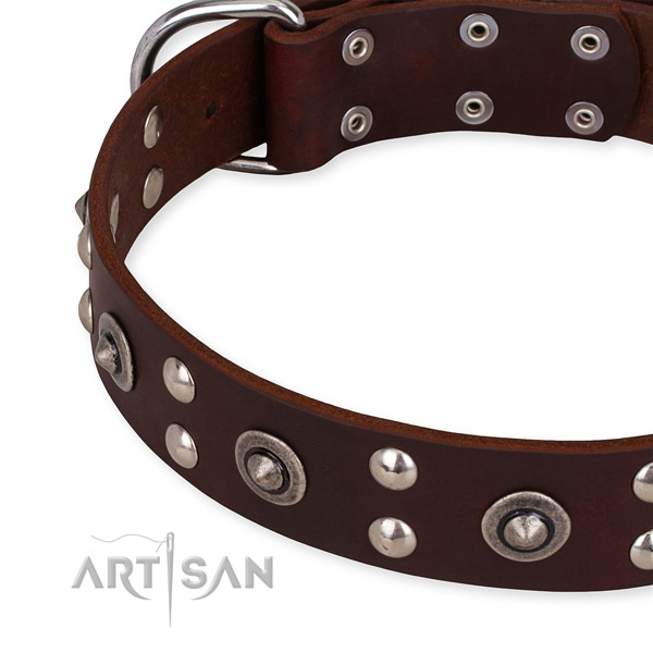 Full grain natural leather collar with corrosion resistant buckle for your lovely pet