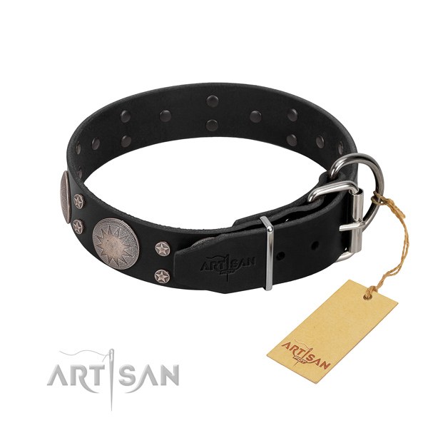 Exceptional embellishments on full grain leather dog collar for handy use