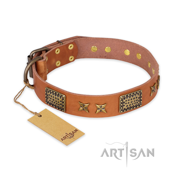 Studded full grain genuine leather dog collar with durable fittings