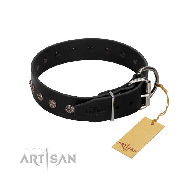 Flexible leather dog collar with adornments for your dog