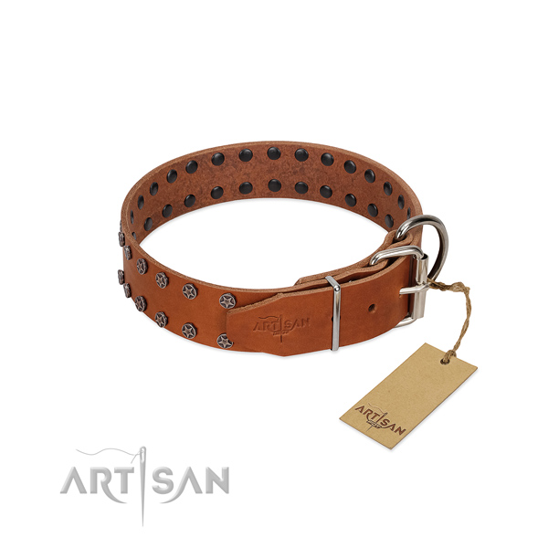 Gentle to touch full grain leather dog collar with embellishments for your dog