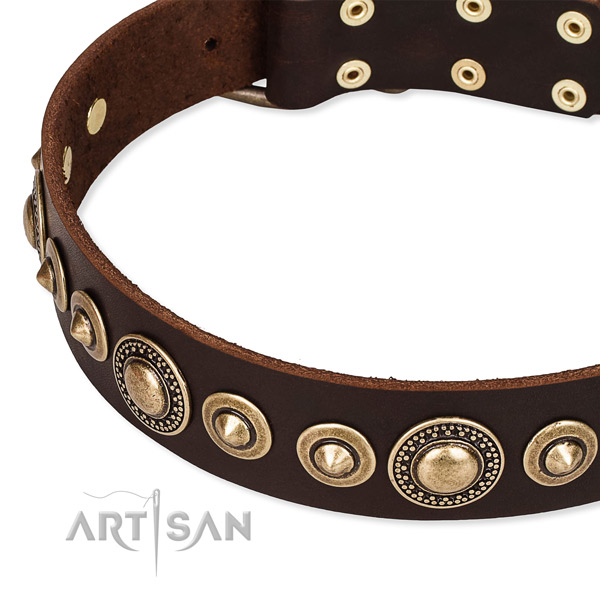 Reliable genuine leather dog collar handcrafted for your beautiful four-legged friend