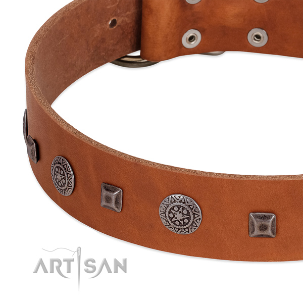 Amazing dog collar of natural leather with embellishments
