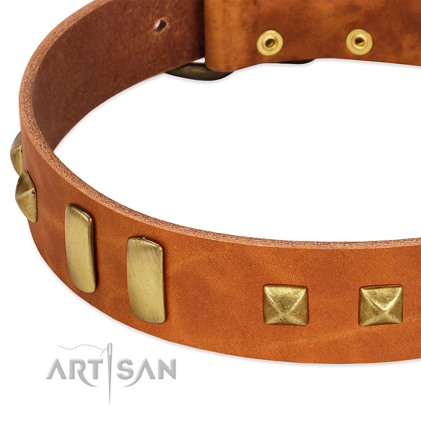Best quality full grain genuine leather dog collar with studs for handy use