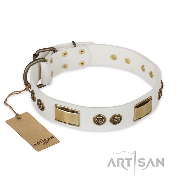 Top notch leather dog collar for fancy walking