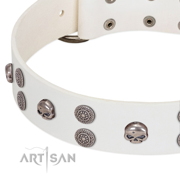 Top notch full grain genuine leather dog collar with remarkable studs