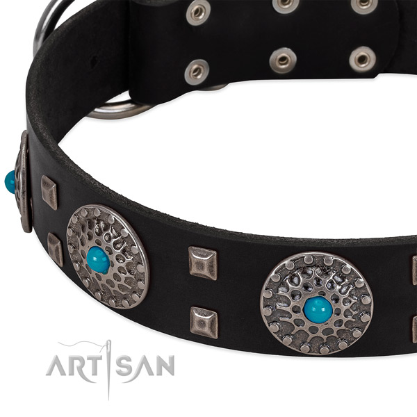 Flexible full grain leather dog collar with remarkable studs