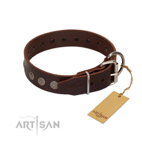 Awesome genuine leather collar for your four-legged friend