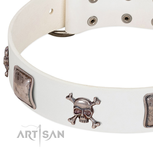 Rust-proof buckle on genuine leather dog collar