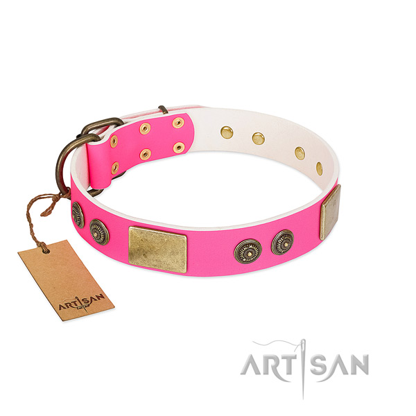 Top notch leather dog collar for comfy wearing