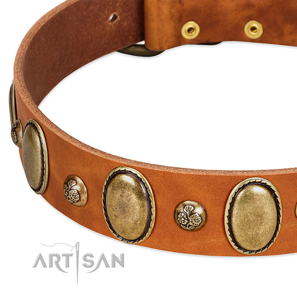 Leather dog collar with exceptional decorations