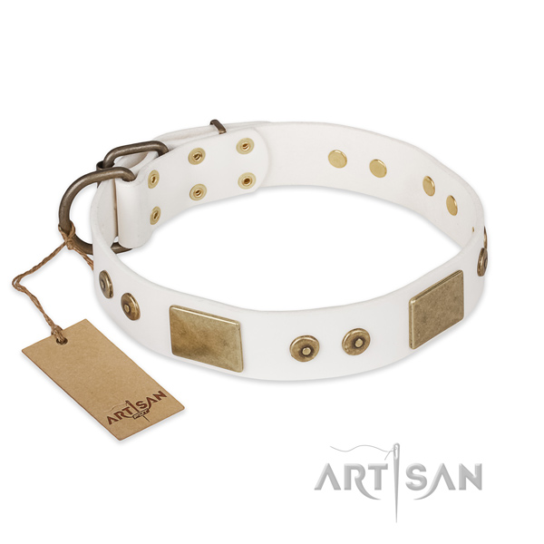 Trendy natural leather dog collar for stylish walking