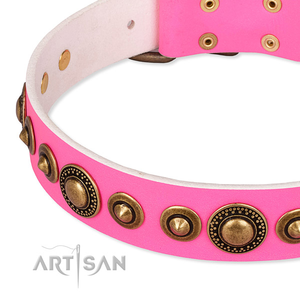 High quality leather dog collar made for your stylish doggie