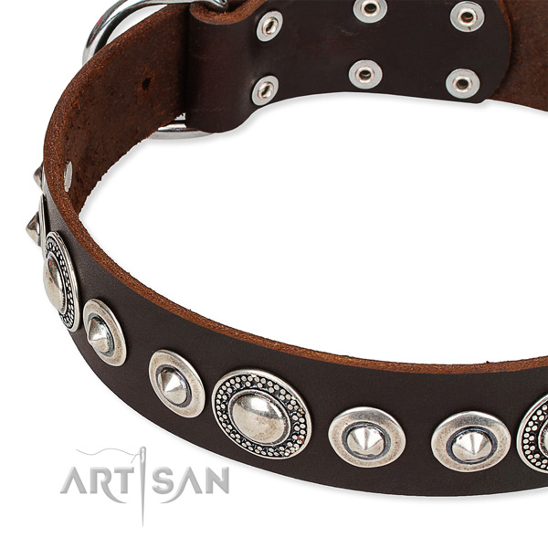 Comfortable wearing embellished dog collar of finest quality full grain natural leather