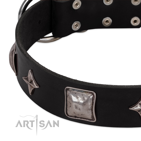 Comfortable wearing full grain leather dog collar with remarkable adornments