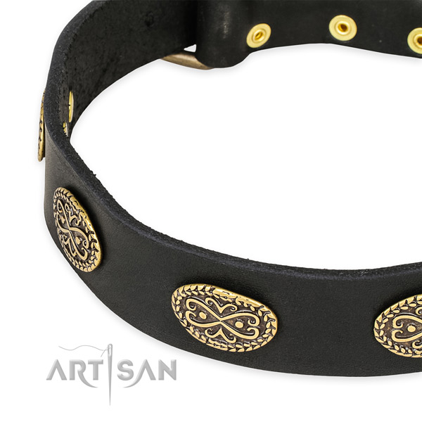 Stunning leather collar for your attractive pet