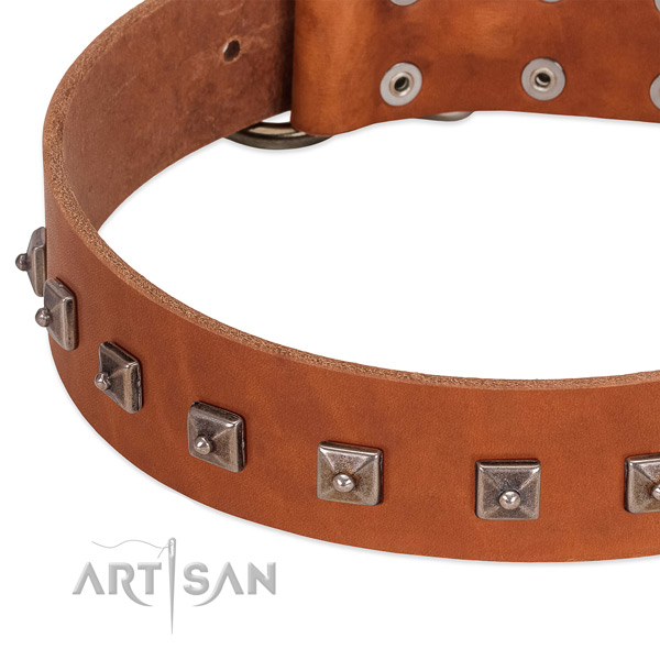 Quality full grain natural leather dog collar with inimitable embellishments