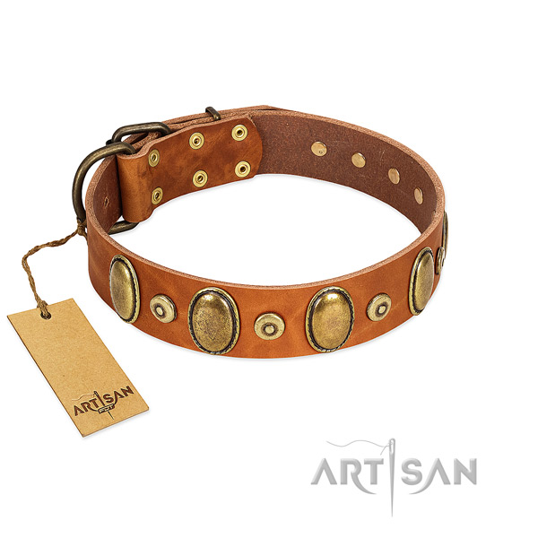 High quality full grain natural leather collar created for your four-legged friend