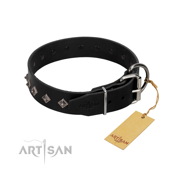 Leather dog collar with amazing decorations for your doggie