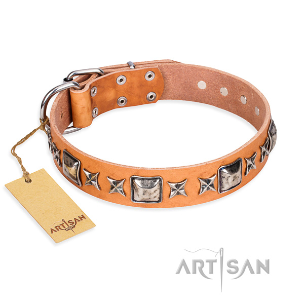 Walking dog collar of quality genuine leather with decorations