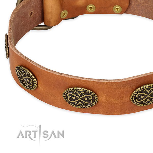 Unique full grain genuine leather collar for your beautiful four-legged friend