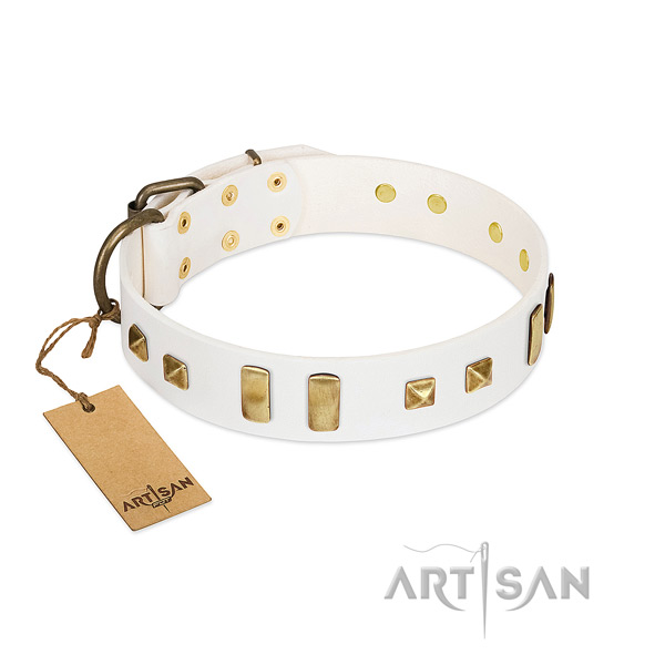 Everyday use dog collar of genuine leather