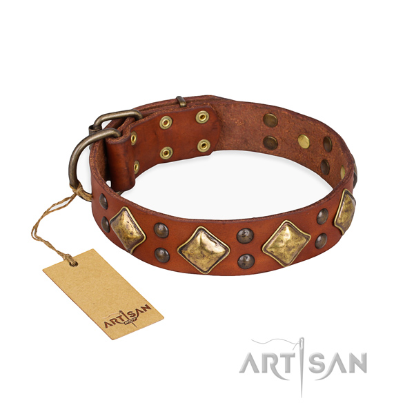 Easy wearing fine quality dog collar with rust-proof D-ring
