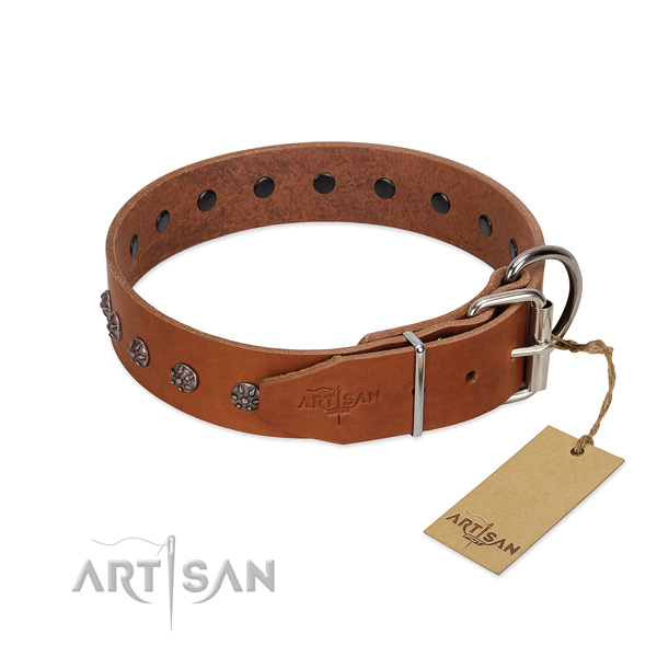 Reliable full grain genuine leather dog collar with embellishments for your canine