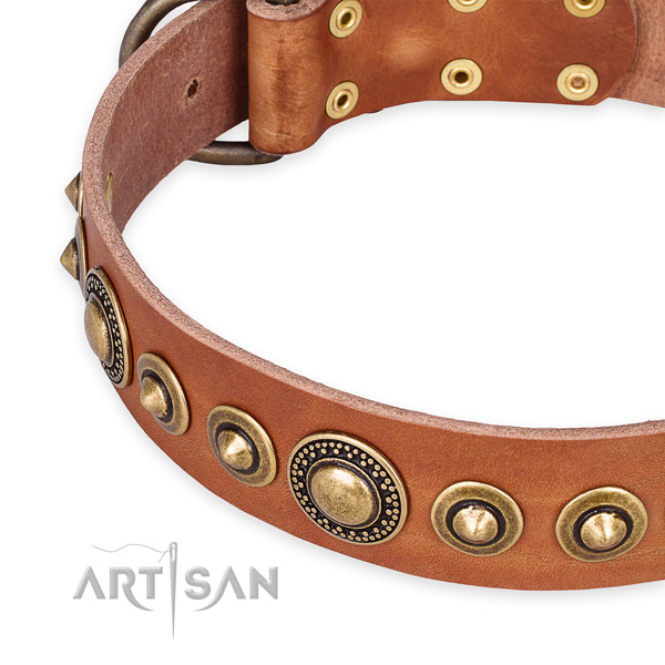 Best quality full grain leather dog collar handcrafted for your impressive canine