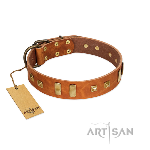 Full grain natural leather dog collar with strong buckle