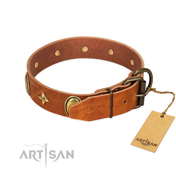 High quality full grain genuine leather dog collar with remarkable embellishments