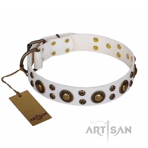 Comfortable wearing dog collar of top quality genuine leather with adornments