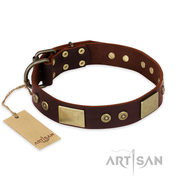 Unusual natural genuine leather dog collar for everyday use
