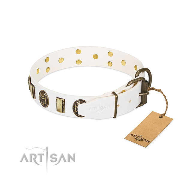 Corrosion proof traditional buckle on full grain genuine leather collar for basic training your canine
