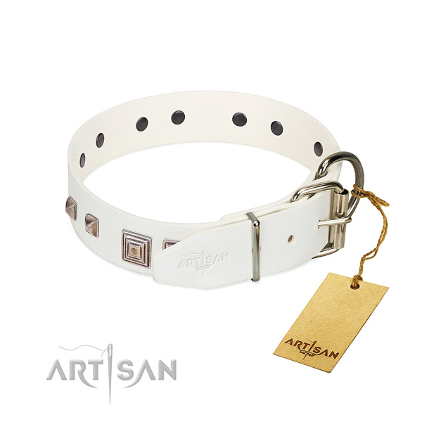 Exquisite collar of full grain leather for your beautiful dog