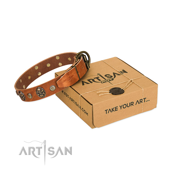 Corrosion proof traditional buckle on full grain genuine leather dog collar for basic training