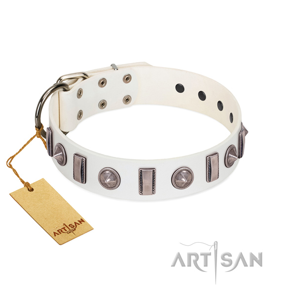 Soft genuine leather dog collar with embellishments for your canine