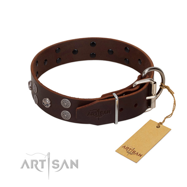 Top rate leather dog collar with studs for stylish walking