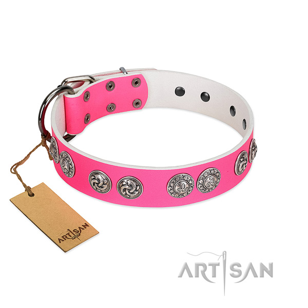 Remarkable full grain leather collar for your four-legged friend walking in style