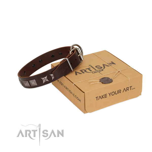 Natural leather dog collar with stylish design adornments created canine