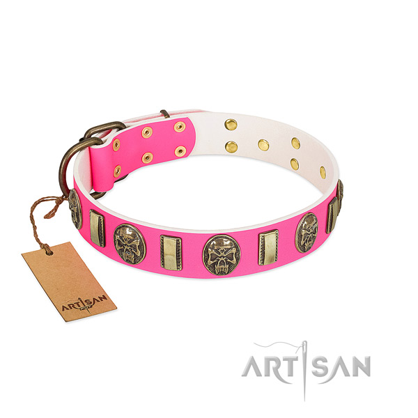 Strong fittings on full grain genuine leather dog collar for your pet